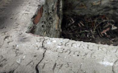 Remains of WW2-era internment camp found in Australia