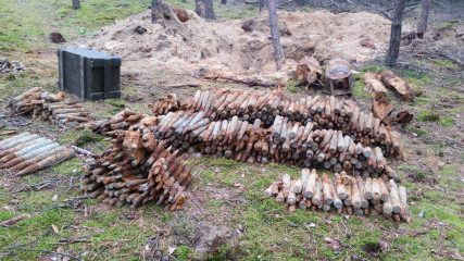 Cache of over 2000 bombs found in a forest