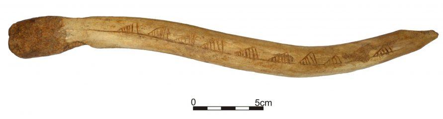 Ornamented antler points to long-distance trade between Mesolithic communities
