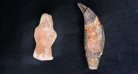Bear figurine found at a Neolithic mound