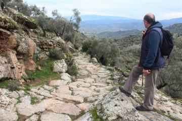 Olive farmers destroy section of an ancient road