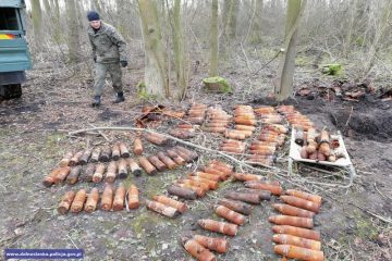 Forty one crates of WW1 missiles secured in a forest