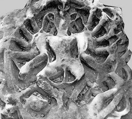Ancient statue of dancing Shiva unearthed