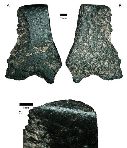 Probably the oldest-known axe found in Australia