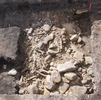 3000-year-old bison butchery uncovered