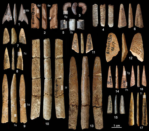 Oldest bone tools found in China