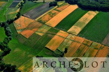 Successful season for aerial archaeologists
