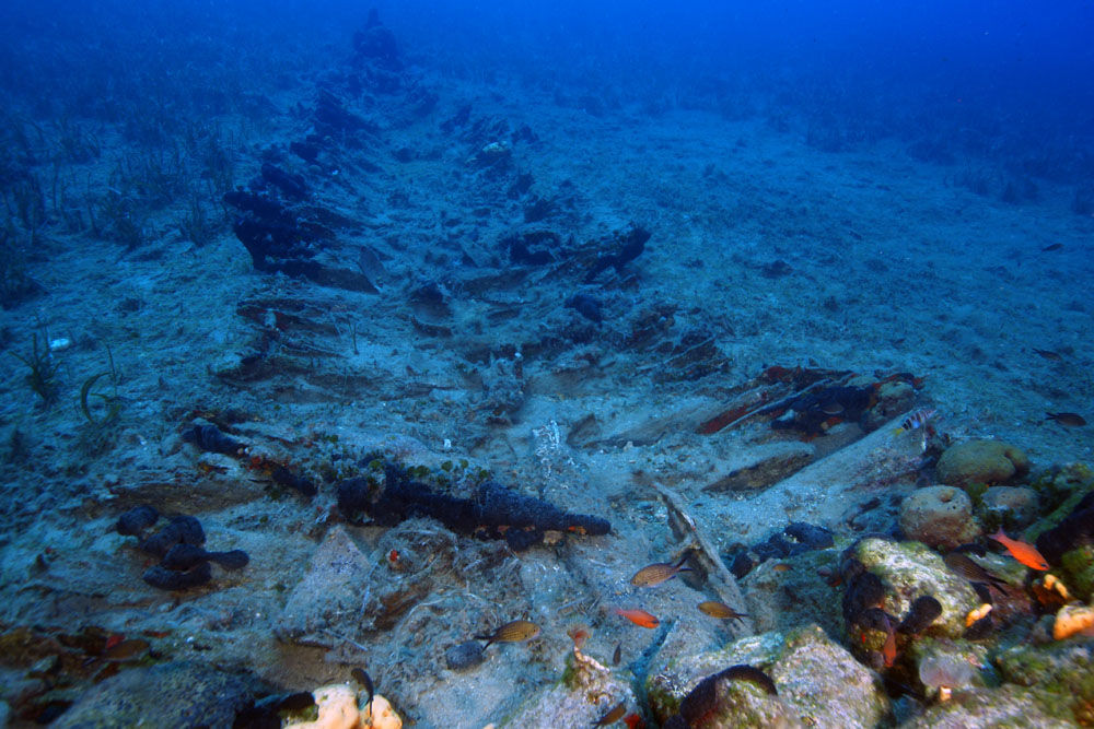 Aegean coast reveals nearly 50 shipwrecks from various eras