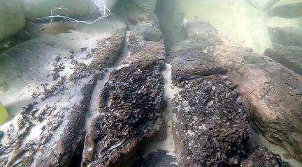 Third shipwreck of a 16th century Spanish fleet sunken off coast Florida found