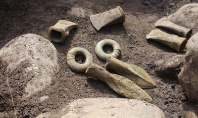 Discovery of 3000-year-old artefacts include a preserved thistle flower