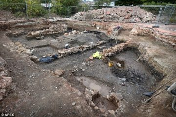 600-year-old shoe discovered in Newton Abbot excavations