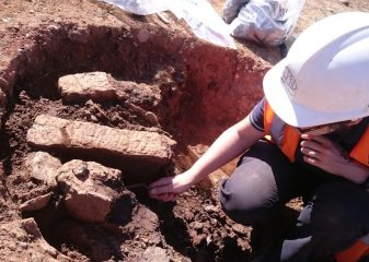 Remains of a Roman settlement discovered