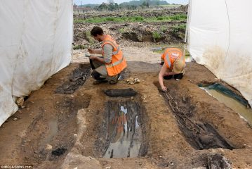 Wooden coffin burials of Anglo-Saxon Christian community discovered