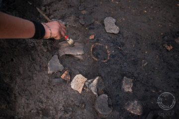 Seed remains from Early Medieval times found