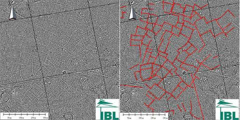 Intriguing linear features found in Białowieża Forest by LiDAR