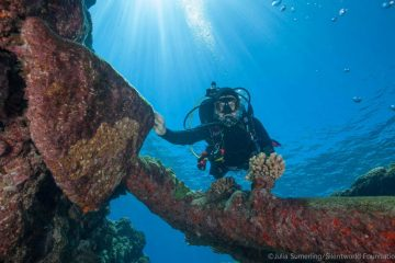 Wrecks of three 19th-century trading ships found off coast Australia