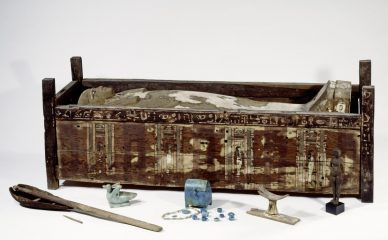 Successful analysis of ancient Egyptian mummy DNA