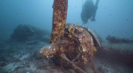 Bodies found in wreck of a B24 airplane downed in 1944