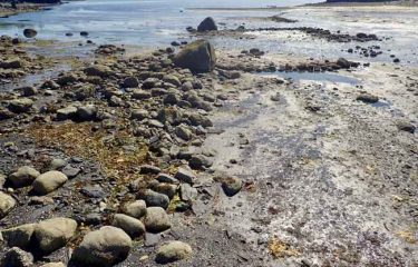 First Prehistoric stone fishtrap found at an Alaskan island