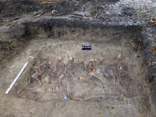 Remains of a dozen people unearthed in a mass grave