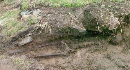 Storm uncovers Iron Age skeletal remains