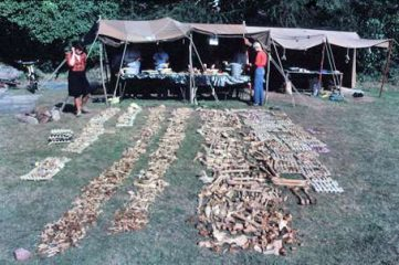 Follow-up: Mass grave carbon-dated back to the Viking Age