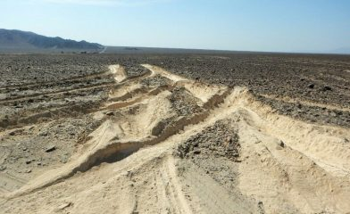 Nazca lines damaged by truck driver