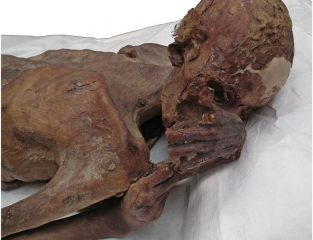 Possibly oldest tattoo found on Egyptian mummy