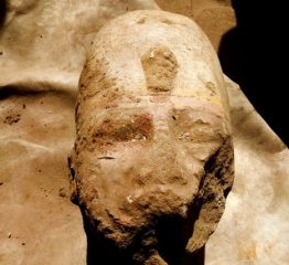 Statue of Ramesses II discovered