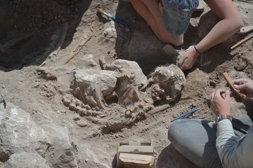 Skeletons and traces of destruction found at ancient town